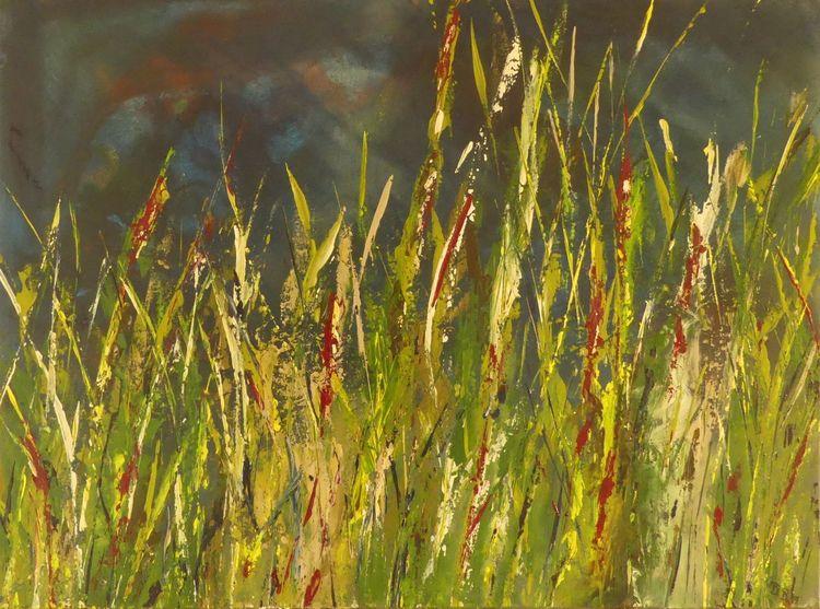 Moor, Grün, Himmel, Gras, Rot, Pflanzen