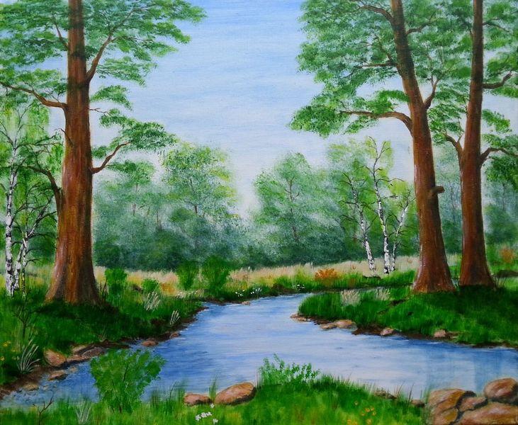 Laubwald, Bach, Birken, Wald, Frühling, Baum