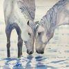 Aquarellmalerei, Tiere, Pferde, Aquarell