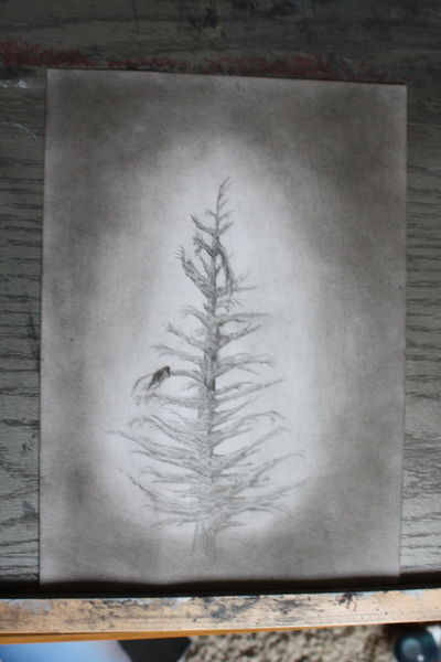 Gothic, Schwarz, Kohlezeichnung, Bleistiftzeichnung, Natur, Romantik