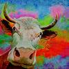 Farben, Acrylmalerei, Realismus, Textur
