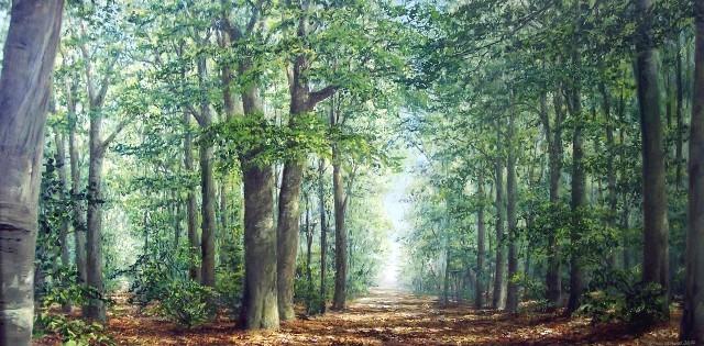 Wald, Lichtblicke, Stamm, Realismus, Malerei, Licht