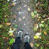 Wald, Herbst, Natur, Menschen