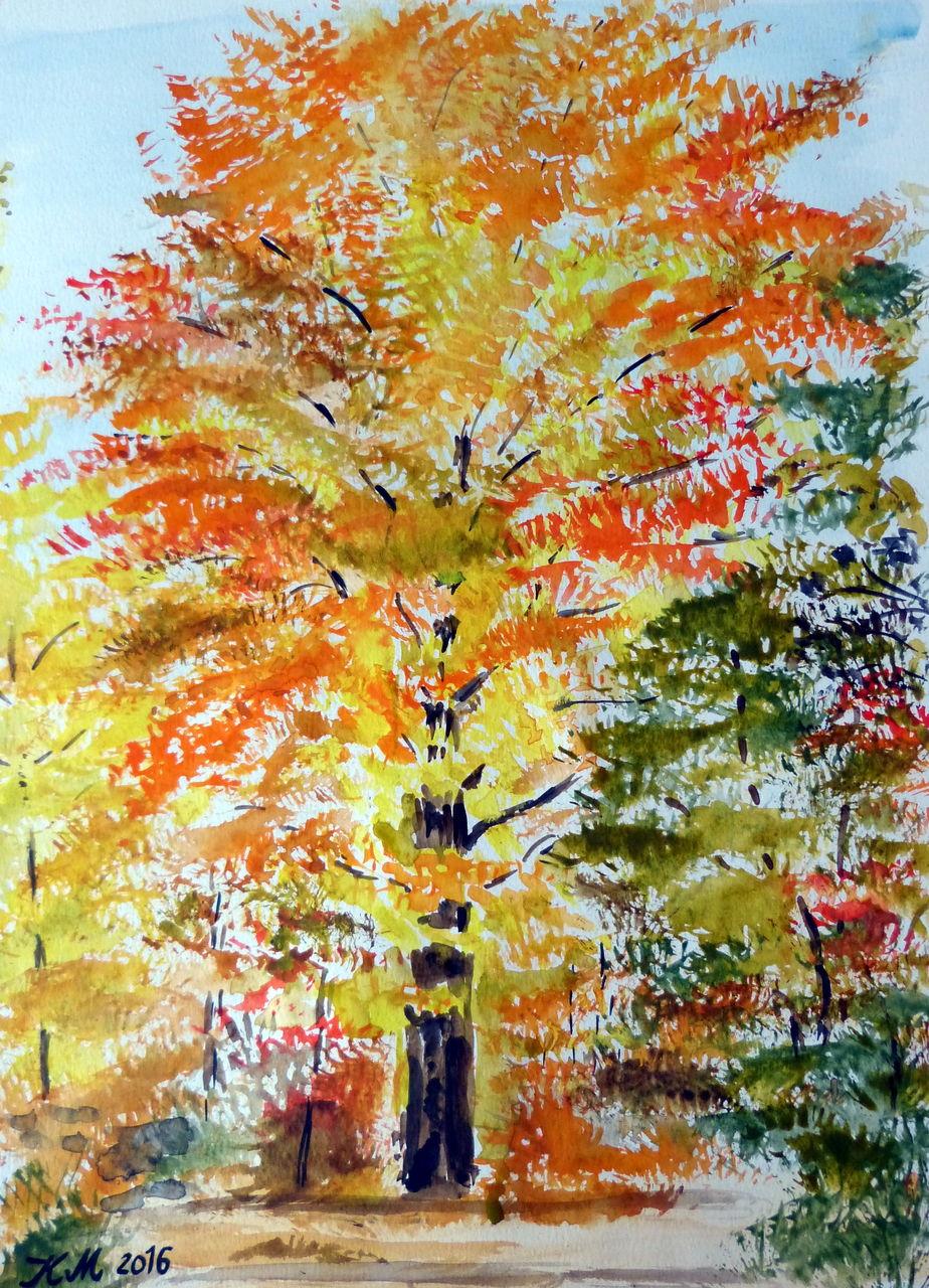 Baum An Der Kreuzung Baum Herbst Goldgelb Aquarell Von Zwillis