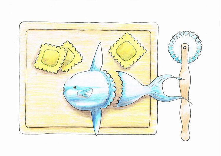 Sunfish, Ravioli, Mondfisch, Zeichnungen,