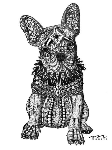 Hund, Schwarz, Tusche, Portrait, Französische bulldogge, Bleistiftzeichnung