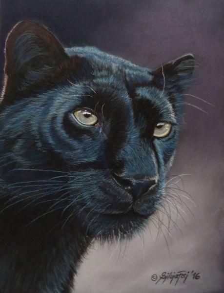 Leopard, Zeichnung, Pastellmalerei, Jaguar, Portrait, Tierwelt