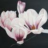 Rosa, Magnolien, Blumen, Äste