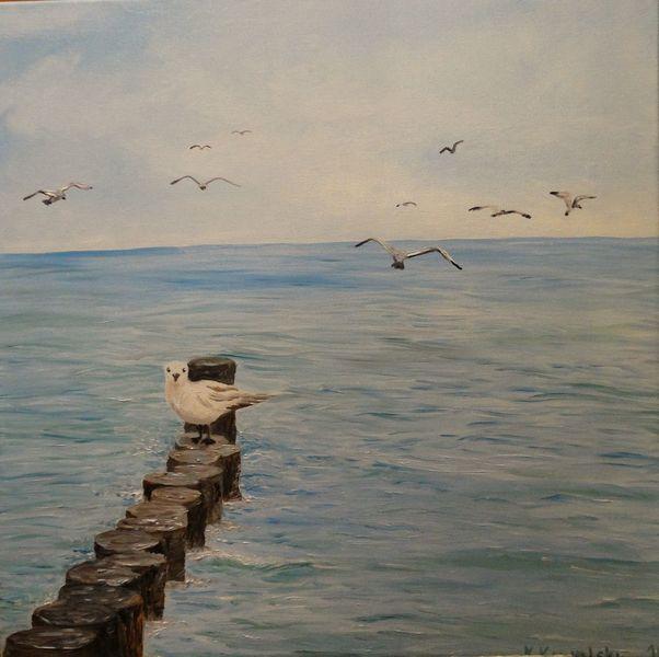Möwe, Rügen, Ostsee, Himmel, Wolken, Malerei