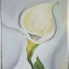 Weiß, Blumen, Kalla, Malerei