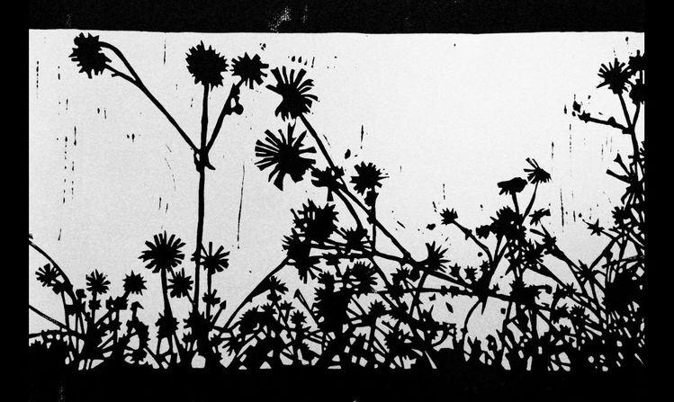 Linolschnitt, Gras, Natur, Nebenbeigekritzel, Licht und schatten, Jahreszeiten