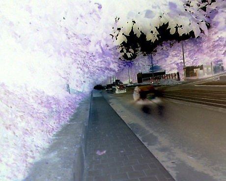 Digital, Fotografie, Expressionismus