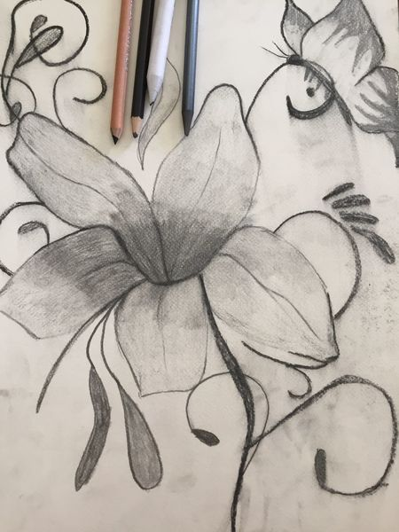 Kohlezeichnung, Schmetterling, Blumen, Zeichnung, Schwarz weiß, Bleistiftzeichnung
