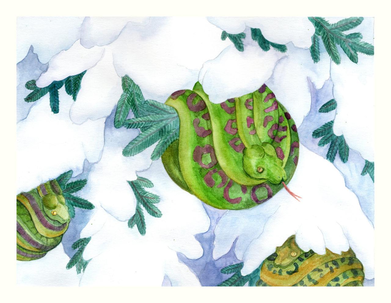Weihnachtskarte Schlange II - Winter, Weihnachten, Schmuck, Kugel ...