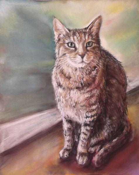 Tipsy, Pastellmalerei, Katze, Zeichnungen