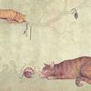 Natur, Buntstiftzeichnung, Katze, Tiere