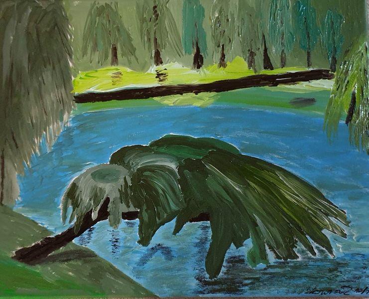 Blau, Braun, Ufer, Wasser, Weide, Baum