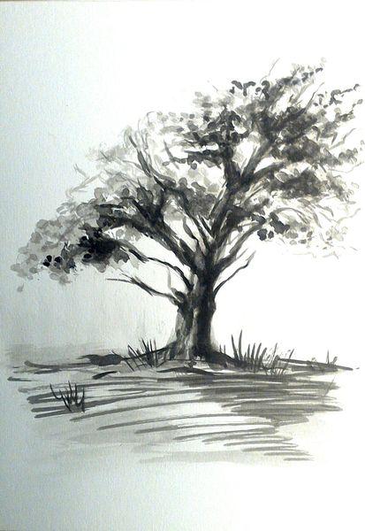 Gras, Weiß, Tuschmalerei, Tuschezeichnung, Landschaft, Zeichnung