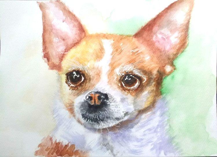 Tierportrait, Tiere, Hundeportrait, Hund, Aquarellmalerei, Chihuahua