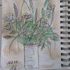 Blumen, Skizze, Valentinstag, Zeichnungen