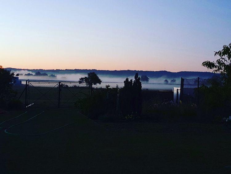 Nebel, Morgen, Landschaft, Fotografie