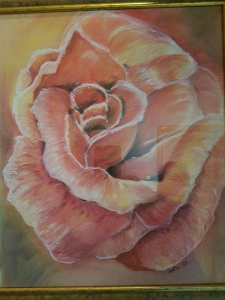 Rose, Kreide, Rosa, Malerei