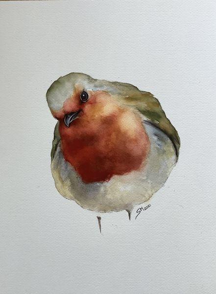 Vogel, Tiere, Aquarellmalerei, Rotkehlchen, Aquarell