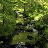 Licht, Farben, Grün, Wasser